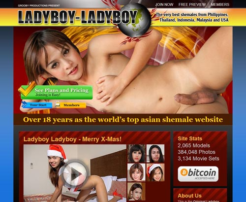 Ladyboy-Ladyboycom Alternatives - 40 Sites Like Ladyboy -5867